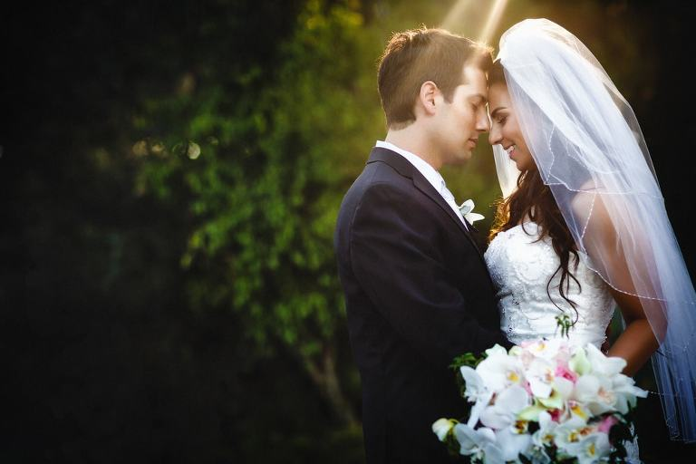 A little light leaking through | The Luxe Sunset Wedding