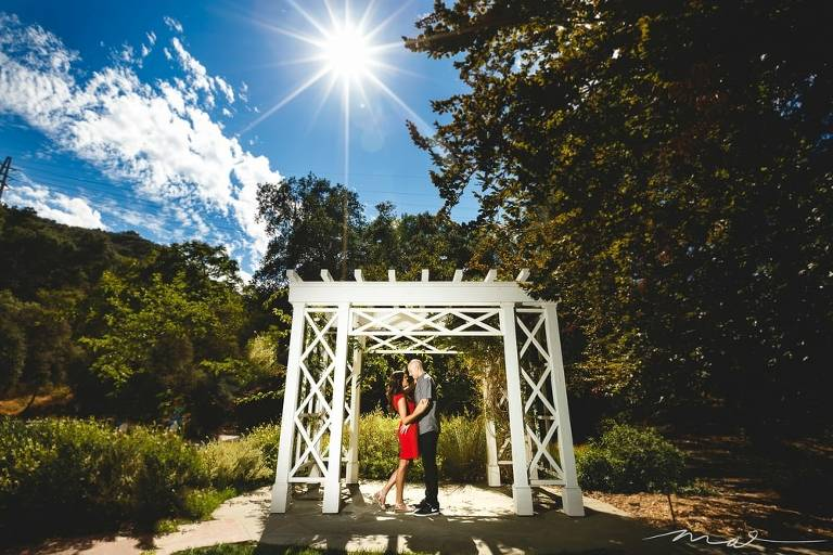 A Beautiful Descanso Gardens Engagement Session in Los Angeles